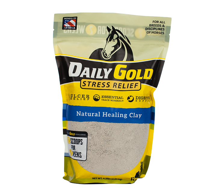 DailyGoldPouch