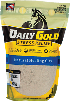dailygold-homepage