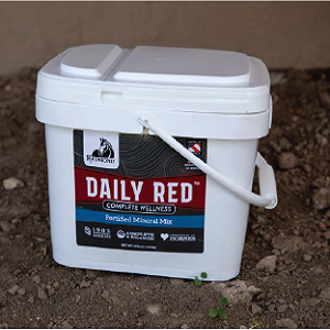 Daily-red-bucket
