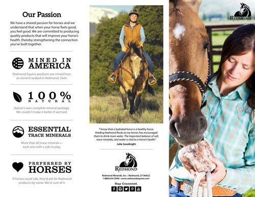 Redmond Equine Brochure