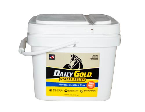 Daily Gold bucket white
