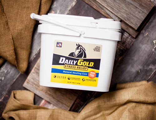 Daily Gold bucket